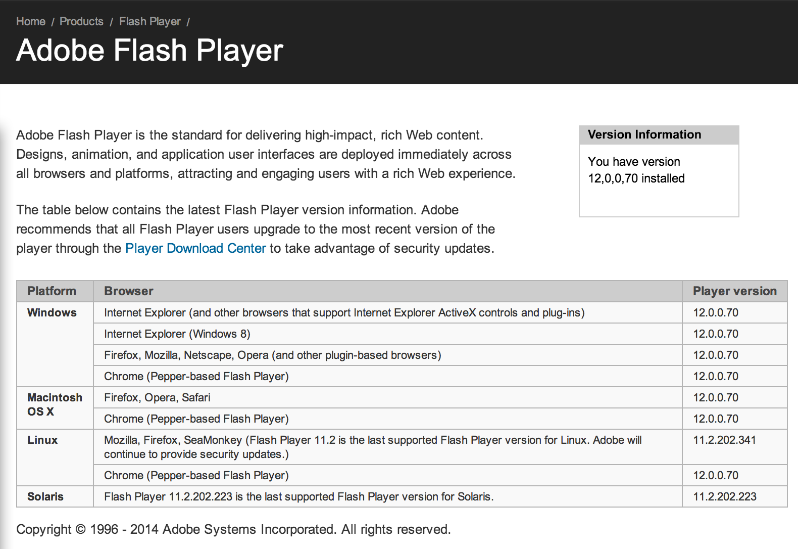 flash player version testen