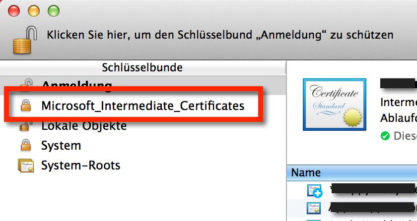 Microsoft_Intermediate_Certificates und Microsoft_Entity_Certificates in OS X und können gelöscht werden, wenn man Entourage nicht nutzt