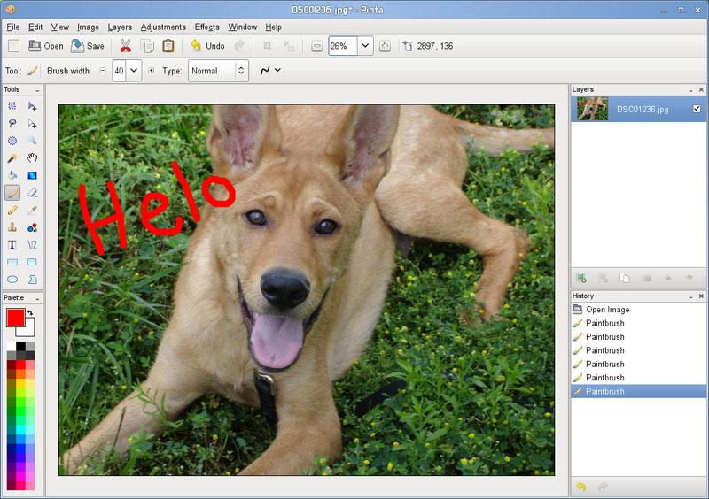 Paint Net Alternative Mac Os X