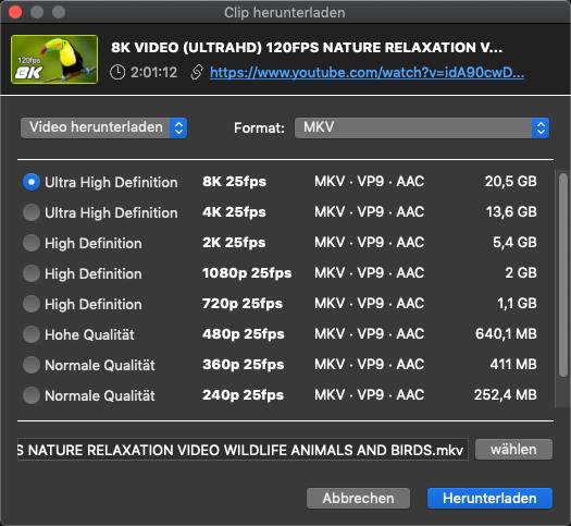 Einstellungen der Qualitätsstufe beim 4K Video Downloader